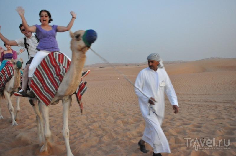 Пустынное сафари в Эмиратах / ОАЭ