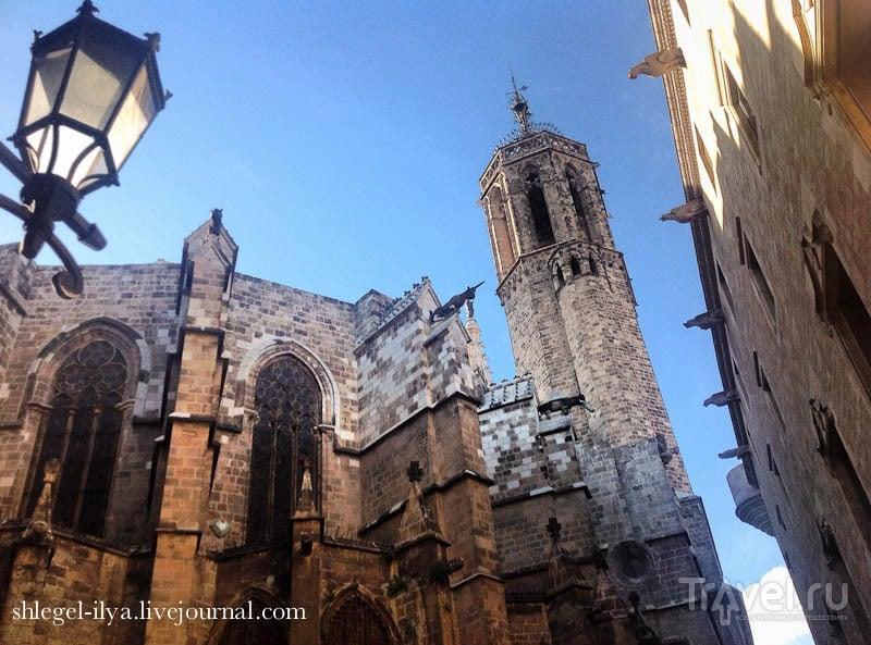 Готический квартал и Пабло Пикассо, Барселона, Испания / Испания