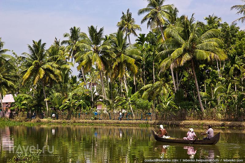 Индия. Керала. Часть 6. Индийские реки и озера в окрестностях Аллеппи / Индия