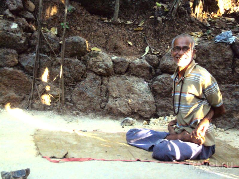 Гоа. Арамболь. Прогулка к Баньяну / Индия