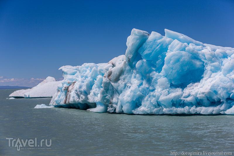 Ледник Вьедма / Фото из Аргентины