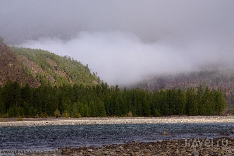 Река Индигирка / Фото из России