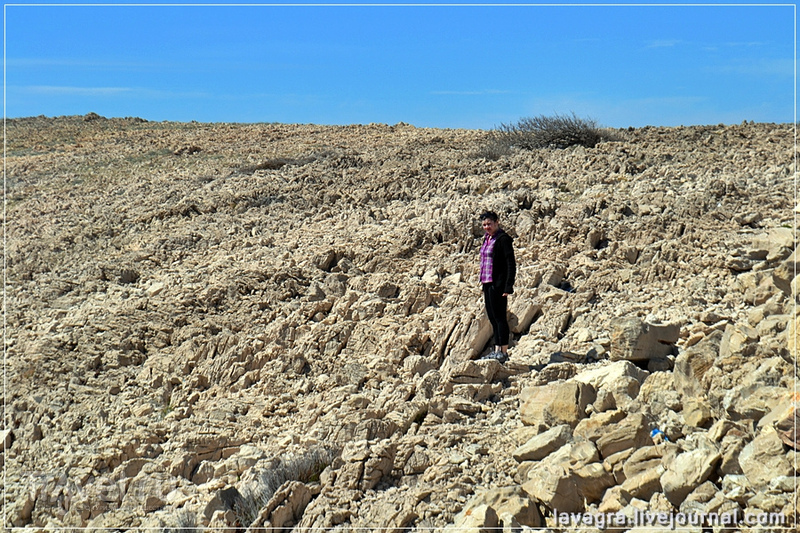 Остров Паг. Пустынная история / Фото из Хорватии