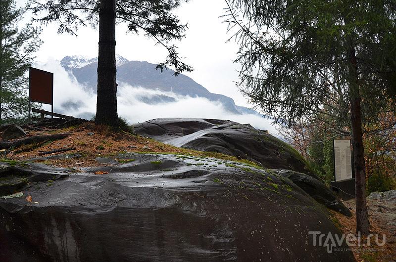 Валуны в парке Накуане / Фото из Италии