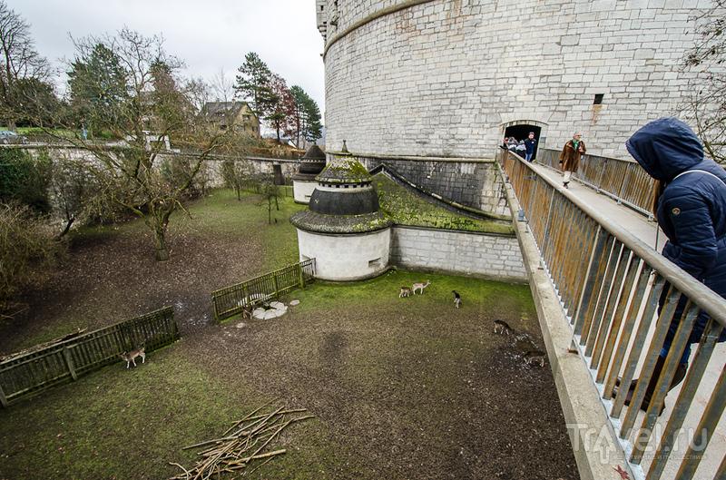 Крепость Munot в Шаффхаузене / Фото из Швейцарии