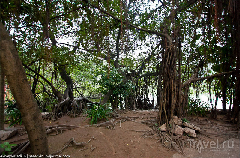Озеро Хоанкьем, Ханой / Фото из Вьетнама