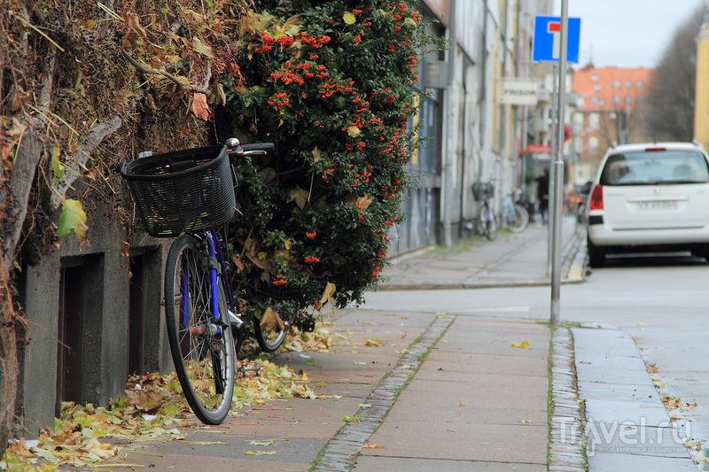 Свободный город Христиания / Дания