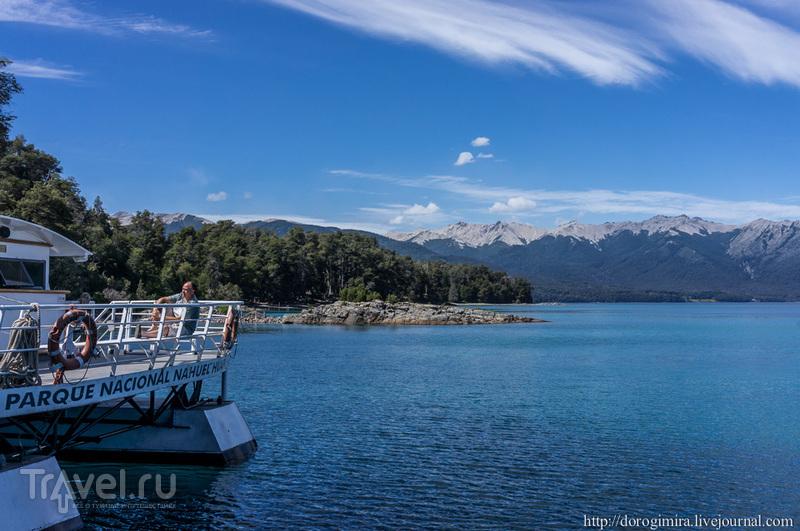 Озеро Науэль-Уапи в Аргентине / Фото из Аргентины