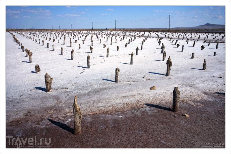 Россия: озеро Баскунчак. Фоторепортаж / Россия