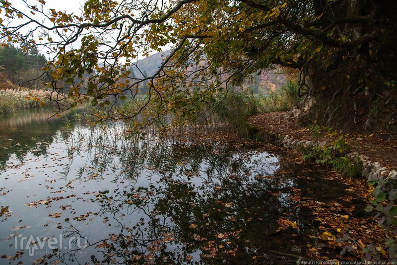 Озеро Градинско в Хорватии / Фото из Хорватии