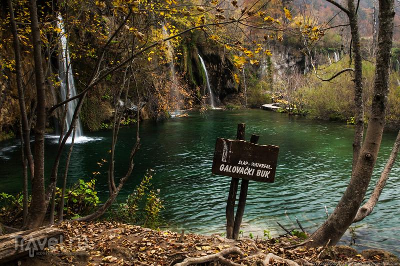 Осень на Плитвицких озерах / Фото из Хорватии
