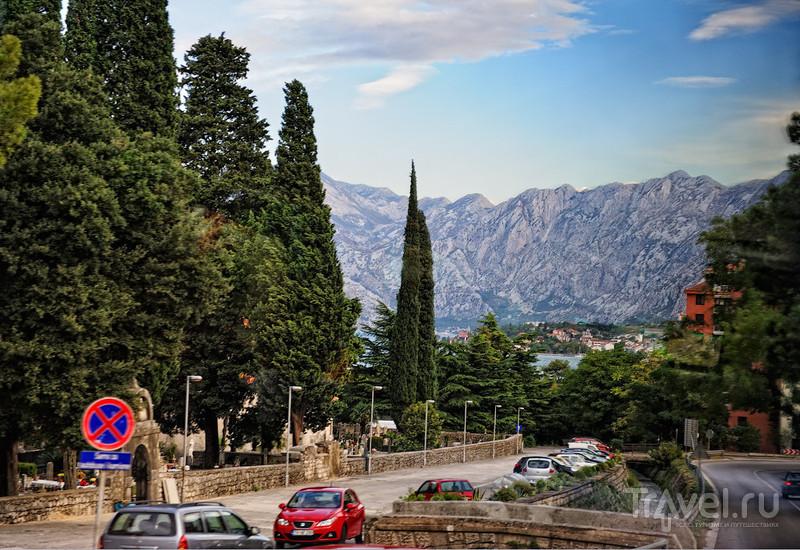 В Которе, Черногория / Фото из Черногории