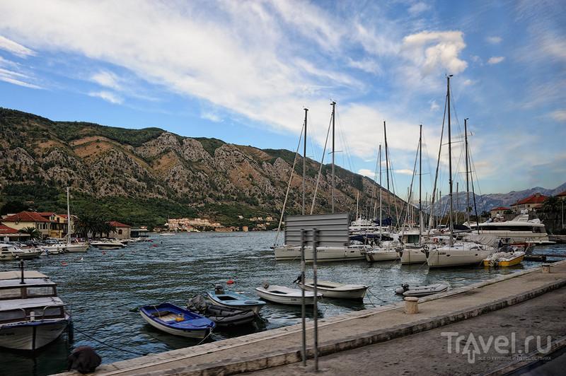 Которская бухта, Черногория / Фото из Черногории