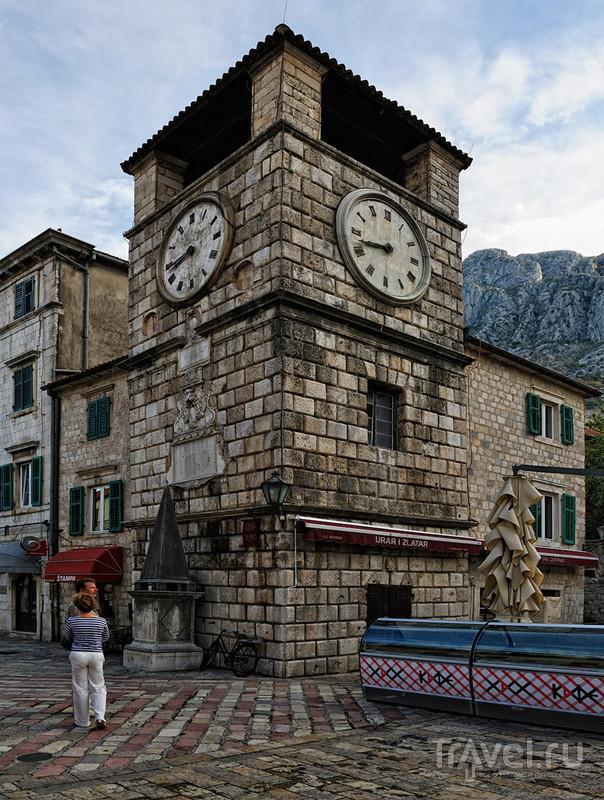 Площадь Оружия в Которе, Черногория / Фото из Черногории