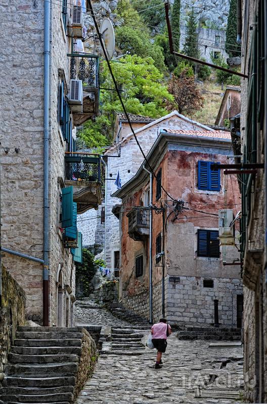Черногория, Которская бухта / Фото из Черногории
