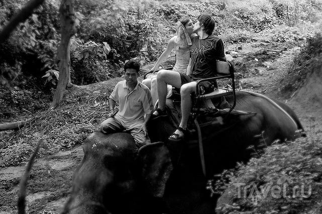 Лучшие типовые поездки / Камбоджа