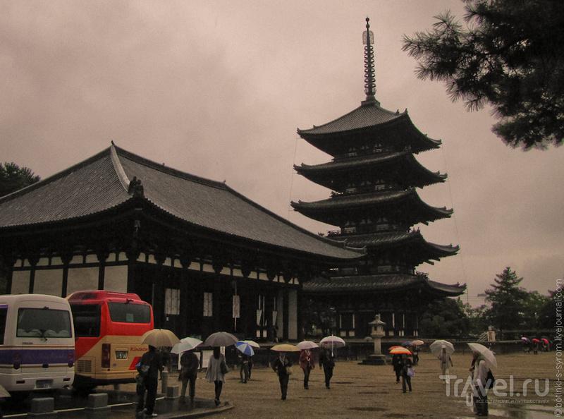 Пагода храма Кофукудзи в Наре / Фото из Японии