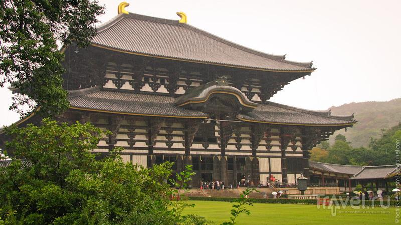 Храм Тодайдзи в Наре / Фото из Японии