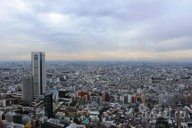 Район Синдзюку в Токио / Фото из Японии