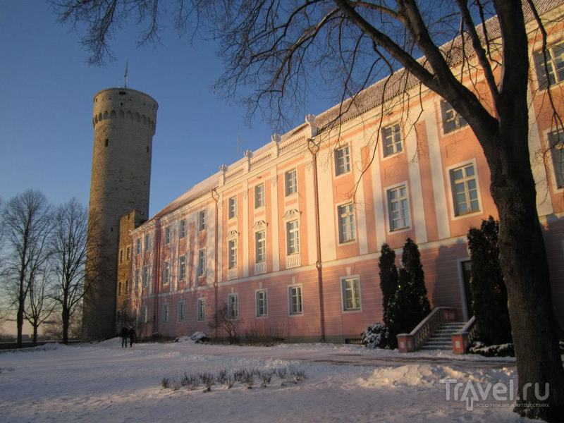 """Башня """"Длинный Герман"""" в Таллине / Фото из Эстонии"""