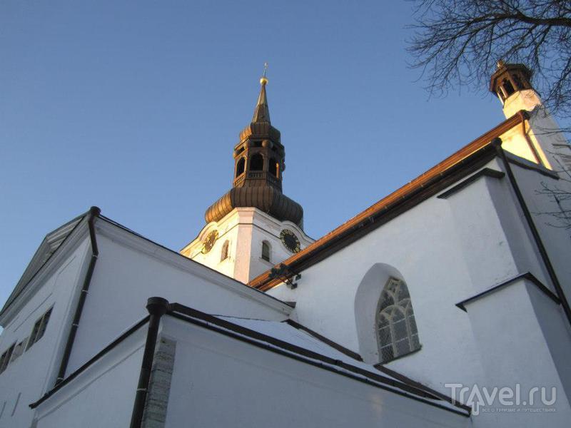 Домский собор в Таллине / Фото из Эстонии