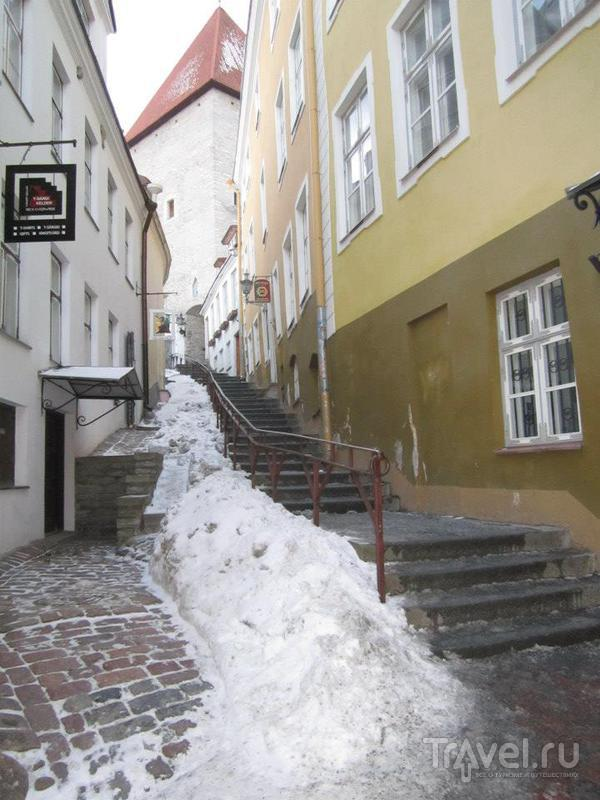 Улица Короткая нога (Lühike jalg) в Таллине / Фото из Эстонии
