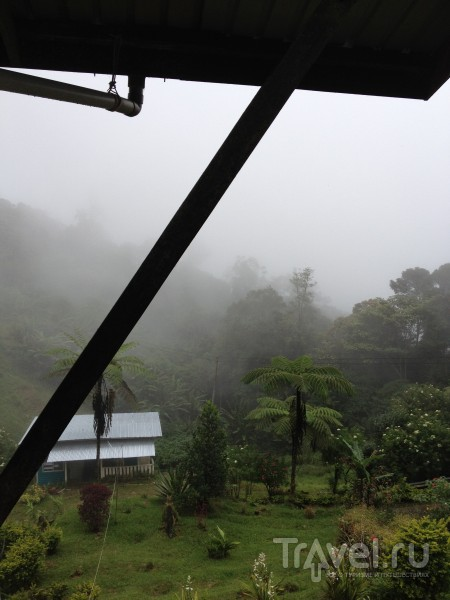 Борнео. Малайзия / Малайзия