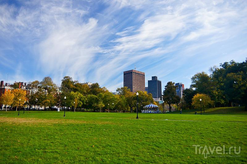 Центральный парк города Бостон-Коммон / Фото из США