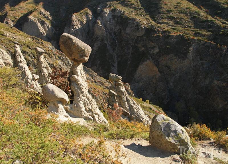 Самый большой водопад и самые большие грибы на Алтае / Россия