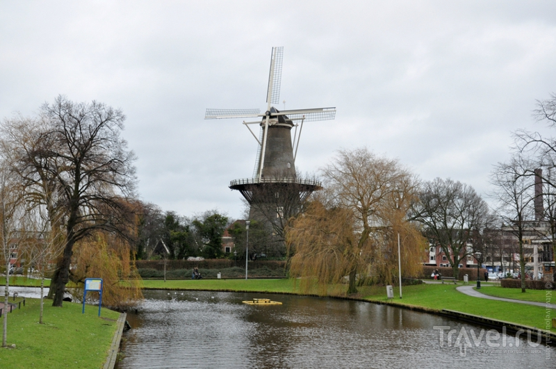 Лейден - типичный университетский городок в Южной Голландии / Фото из Нидерландов