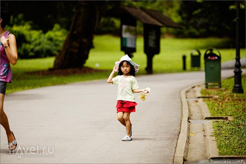 Три дня в Сингапуре / Фото из Сингапура