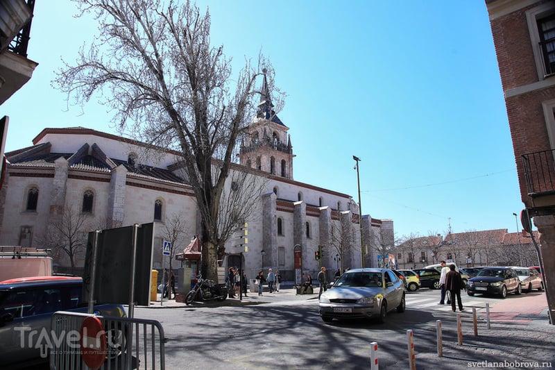 Университет Колехио-Майор-де-Сан-Ильдефонсо в Алькала-де-Энарес / Фото из Испании