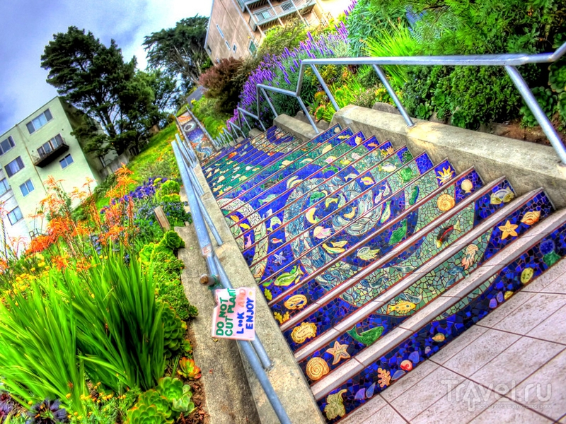 Первые мозаичные панно на ступенях The Tiled Steps появились в 2003 году / США