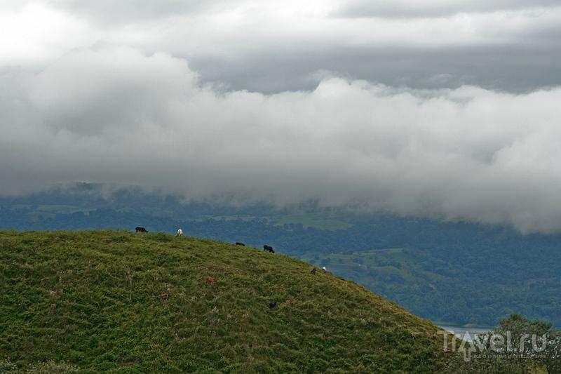 Окрестности вулкана Ареналь, Коста-Рика / Фото из Коста-Рики