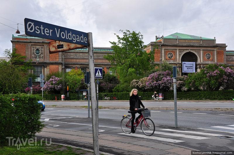 Королевская галерея искусств / Фото из Дании