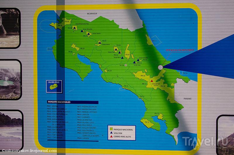 Коста-Рика: восхождение на Ареналь и сплав по реке Бальса / Фото из Коста-Рики