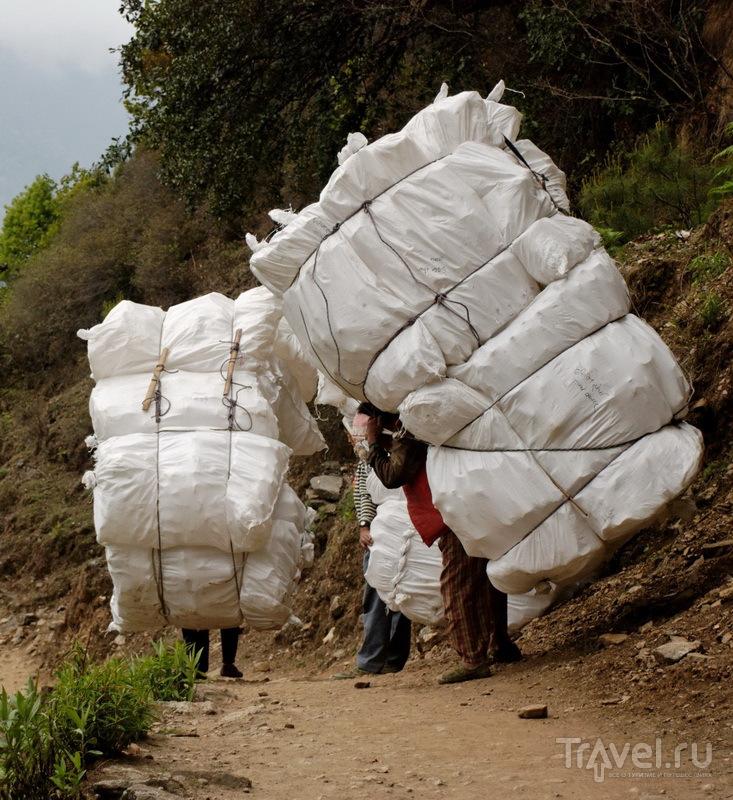 Портеры с грузом / Фото из Непала