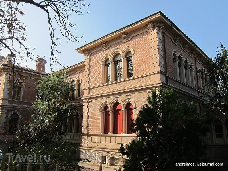 Улица Данте Алигьери (Viale Dante Alighieri) / Фото из Италии