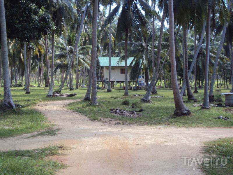 Как мы искали дом на Ко Пангане / Таиланд