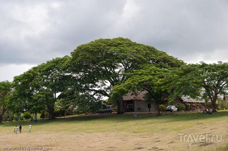 Национальный музей и библиотека в Порт-Виле, Вануату / Фото из Вануату