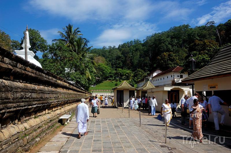 Знакомимся с цейлонской медициной / Шри-Ланка