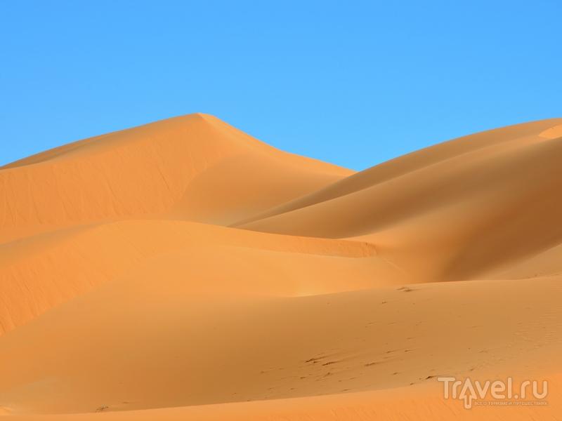 Пустынные ландшафты Алжира: оазисы, дюны и ксуры Сахары / Фото из Алжира
