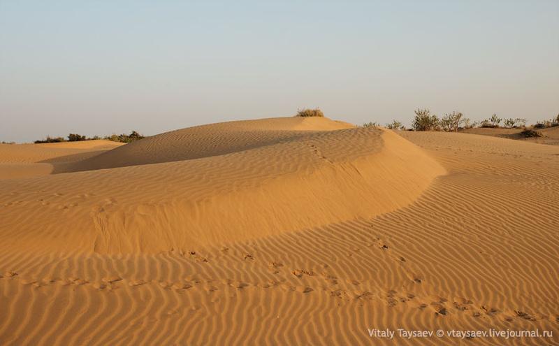 Пустыня Тар, Индия / Фото из Индии