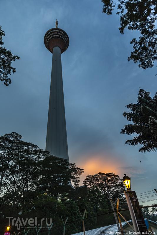 Телебашня Menara KL в Куала-Лумпуре / Фото из Малайзии