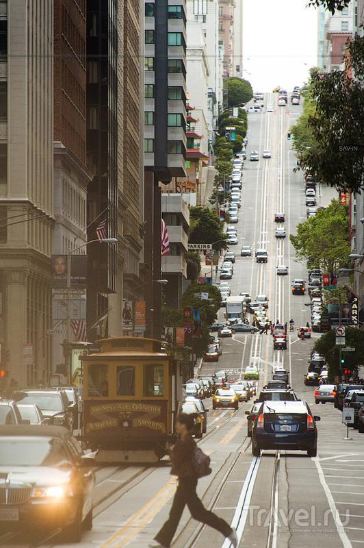 Холмы Твин-Пикс в Сан-Франциско / Фото из США