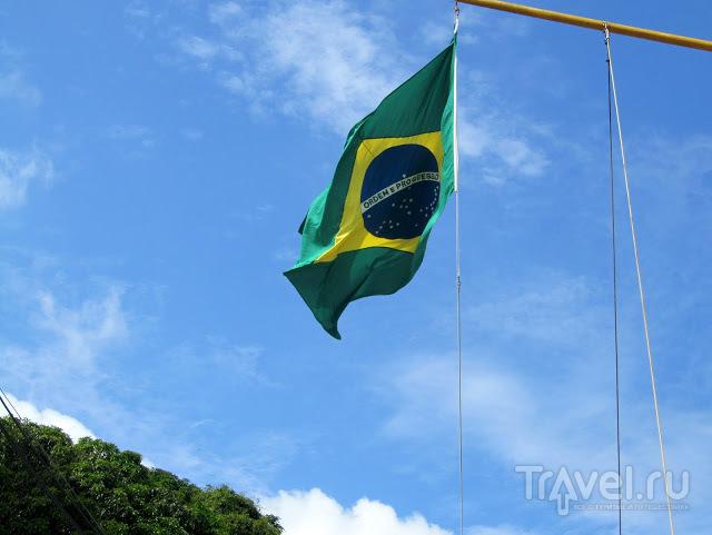 Плывут они в Бразилию... / Бразилия