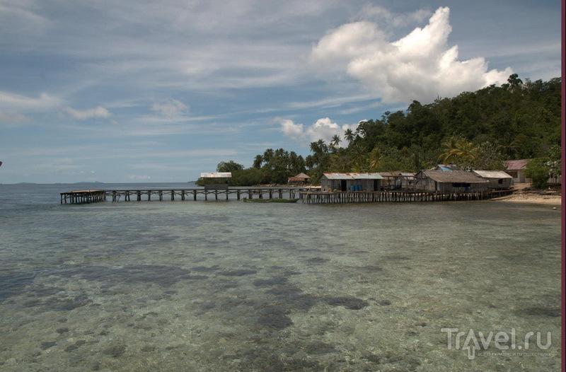 Раджа Ампат - относительно дешево / Индонезия