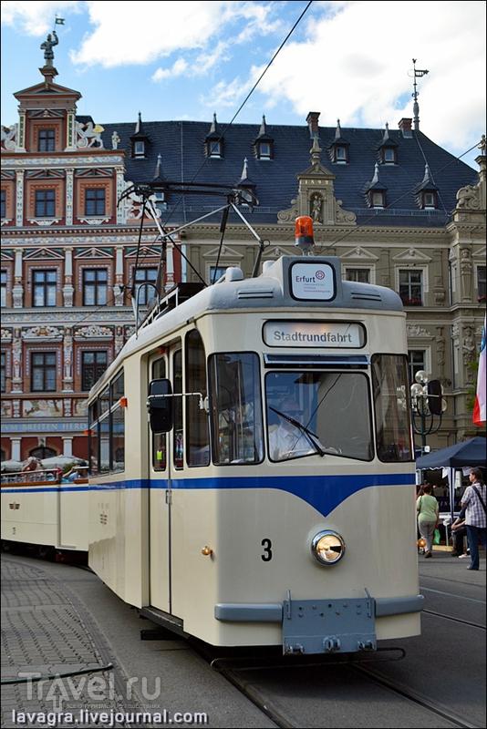 Удивительный город Эрфурт / Фото из Германии