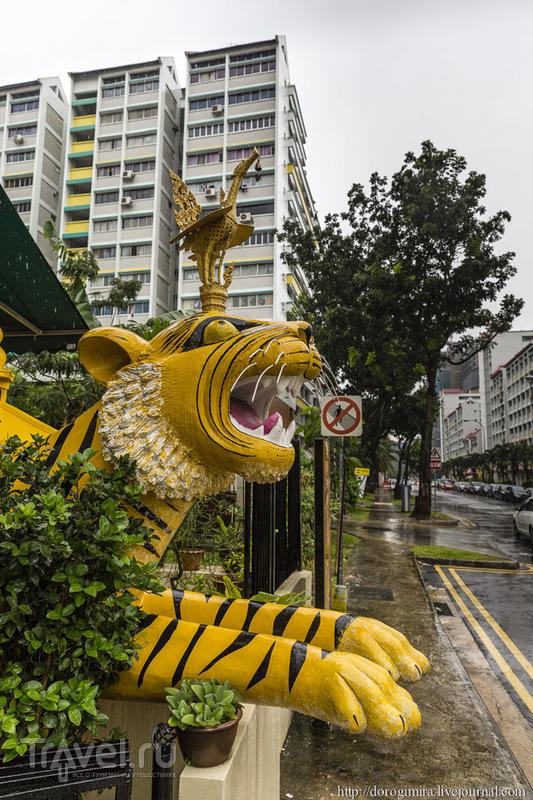 """""""Сингапурский слинг"""" / Фото из Сингапура"""