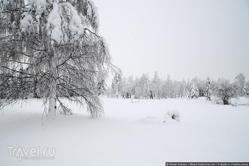 По дорогам сказочной Лапландии / Финляндия